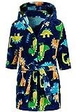 Lodunsyr Albornoces Niña Niño Pijamas y Batas Infantil Textiles de Baño Muchacha Azul Dinosaurio Albornoz con Capucha Batas Regalos Suave Ropa de Dormir 2-9 Años