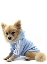 pijama perro